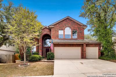 San Antonio TX Single Family Home New: $284,000