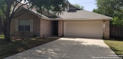 San Antonio TX Single Family Home New: $184,900