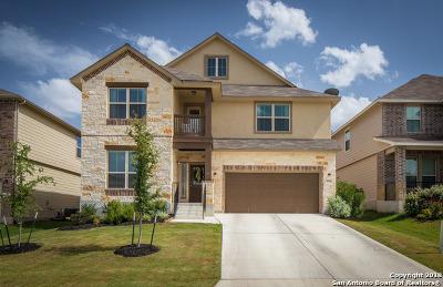 New Braunfels TX Single Family Home New: $329,900