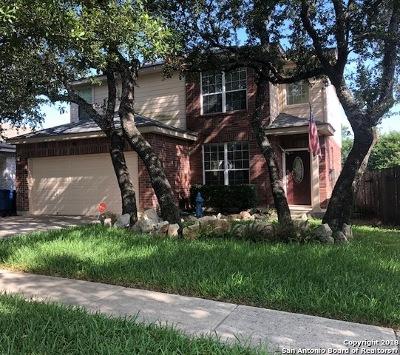 San Antonio TX Single Family Home New: $245,500