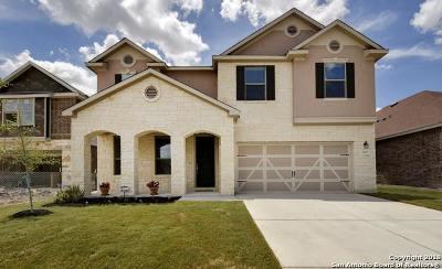 New Braunfels TX Single Family Home New: $305,000