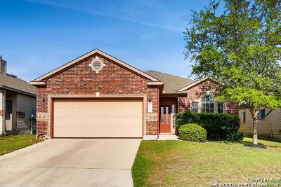 Boerne Single Family Home New: 26206 Presidio Clf