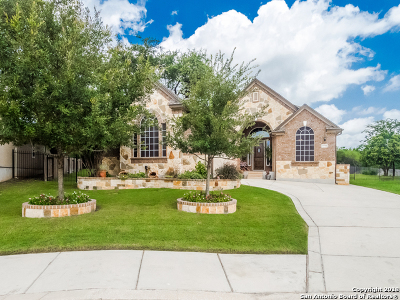 Helotes Single Family Home New: 9778 Helotes Hill