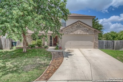 Guadalupe County Single Family Home New: 212 Hondo Dr