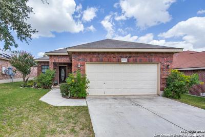 San Antonio TX Single Family Home New: $188,000