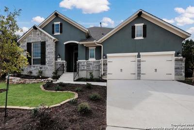 San Antonio Single Family Home New: 3800 Monteverde