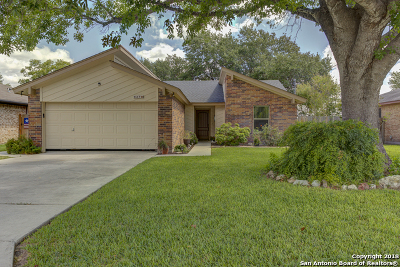 New Braunfels Single Family Home New: 927 Seminole Dr