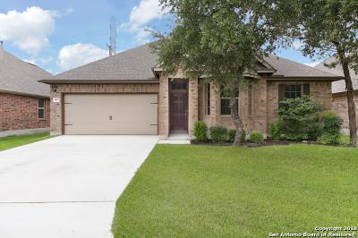 San Antonio TX Single Family Home New: $260,000