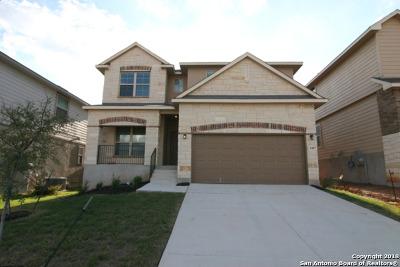 San Antonio TX Single Family Home New: $279,026