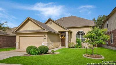 San Antonio TX Single Family Home New: $239,000