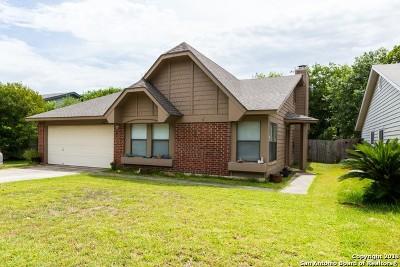 San Antonio Single Family Home New: 9135 Autumn Meadows