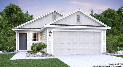 Single Family Home New: 5910 Autumn Palms