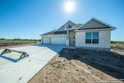 New Braunfels Single Family Home New: 3179 Daisy Meadow