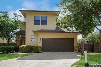 Bexar County Single Family Home New: 13823 Dream Cove