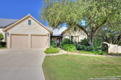 Menger Springs Single Family Home For Sale: 252 Well Springs