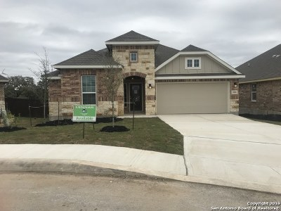 San Antonio Single Family Home New: 1006 Tempera
