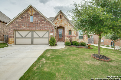 Boerne Single Family Home New: 27114 Smokey Chase