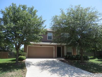 San Antonio Single Family Home New: 11818 Basil Grass