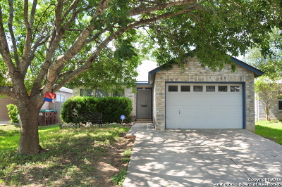 Converse Single Family Home New: 6850 Cape Meadow Dr