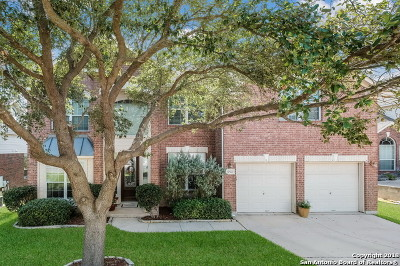 Bexar County Single Family Home New: 19507 Clay Oak