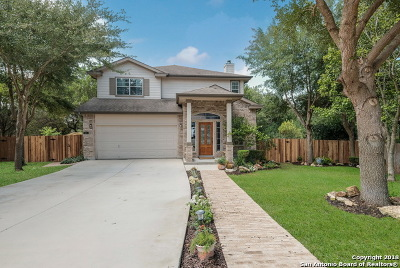 Schertz Single Family Home New: 501 Friar Rock Way