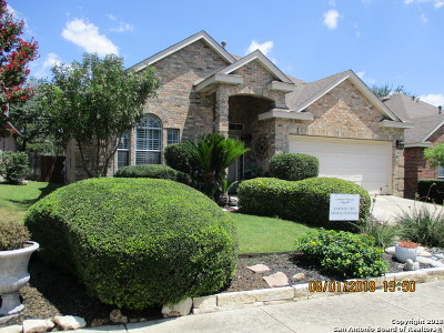Bexar County Single Family Home New: 26023 Copperas Ln