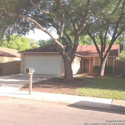 San Antonio Single Family Home New: 10028 Woodtrail