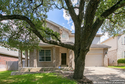 Bexar County Single Family Home New: 2826 Sierra Salinas
