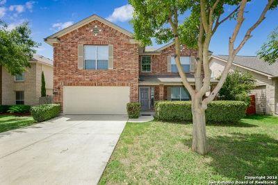 San Antonio Single Family Home New: 10938 Mustang Spring