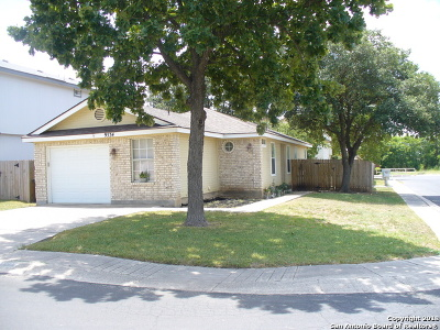 San Antonio Single Family Home New: 9534 Swans Xing