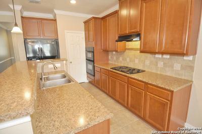 San Antonio Single Family Home New: 1127 Sundance Fall