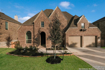 San Antonio Single Family Home New: 25456 River Ledge