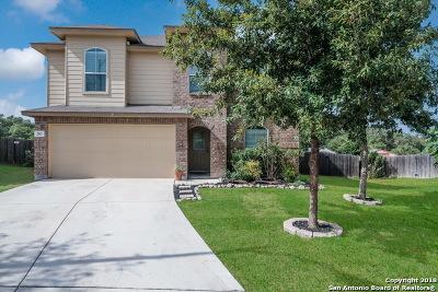 San Antonio Single Family Home New: 283 Reeves Garden