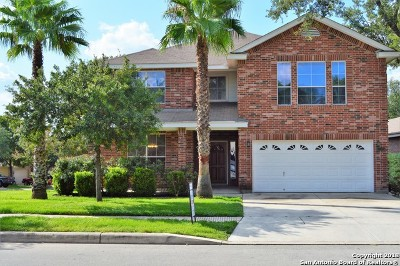 San Antonio TX Single Family Home New: $289,900