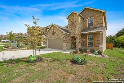 San Antonio TX Single Family Home New: $299,999