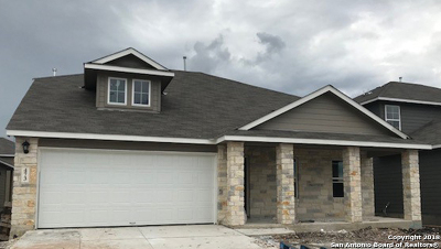 New Braunfels Single Family Home New: 473 Moonvine Way