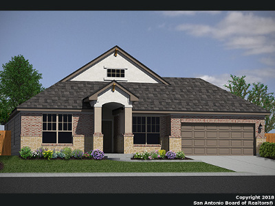 New Braunfels Single Family Home New: 2982 Daisy Meadow