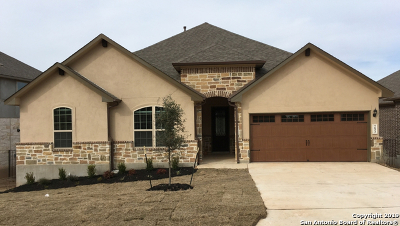 New Braunfels Single Family Home New: 293 Sigel Ave