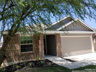 San Antonio TX Single Family Home New: $237,299