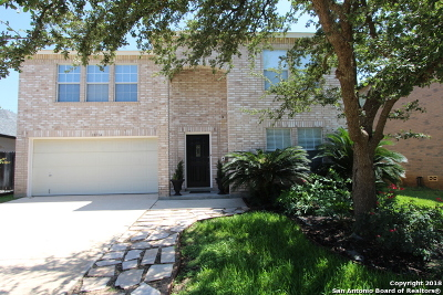 San Antonio TX Single Family Home New: $265,000