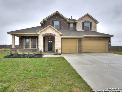 San Antonio Single Family Home Price Change: 602 Ridge Park Dr