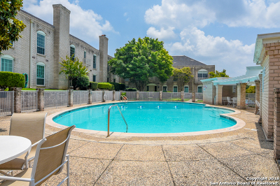 San Antonio Condo/Townhouse New: 102 Ruelle Ln #220A