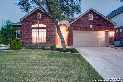 San Antonio Single Family Home New: 11502 Belicena Rd