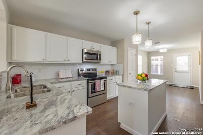 San Antonio Single Family Home New: 11718 Silver Prairie