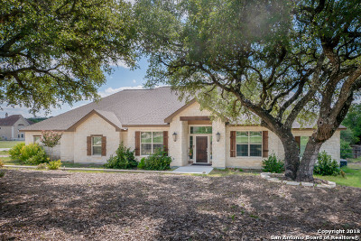 Spring Branch Single Family Home New: 1380 Frontier