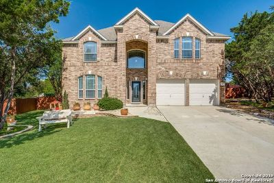 San Antonio Single Family Home New: 25811 Canyon Glen
