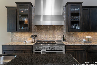 San Antonio Single Family Home New: 8419 Pico De Aguila