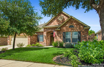 San Antonio Single Family Home New: 24923 White Creek