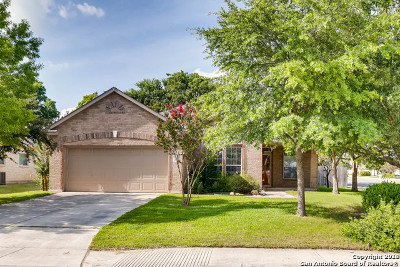 Boerne Single Family Home New: 110 Winding Path