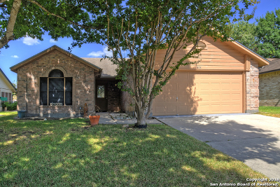 Schertz Single Family Home New: 3808 Overlook Dr